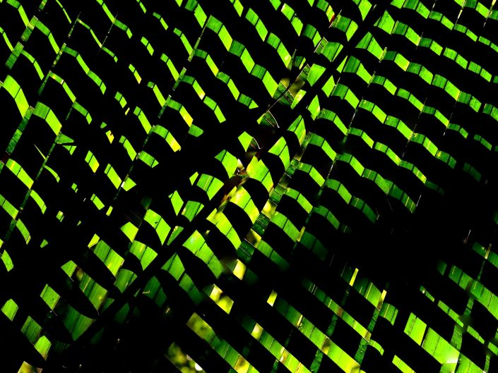 HOTO-GRAPHIE-DI-SEGNI-AS-TRATTI 01 photo-GRAPHIE-di-SEGNI-as-TRATTI 02 PHOTO-GRAPHIE-DI-SEGNI-AS-TRATTI 02 photo-GRAPHIE-di-SEGNI-as-TRATTI 03 PHOTO-GRAPHIE-DI-SEGNI-AS-TRATTI 04